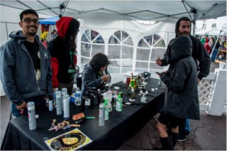 marijuana festival phoenix