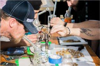 marijuana festival phoenix dabbing