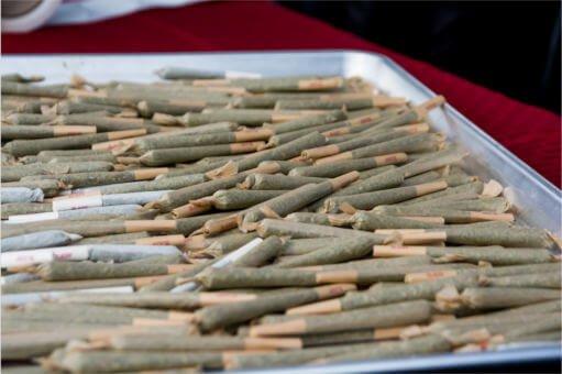 marijuana festival phoenix raw joints