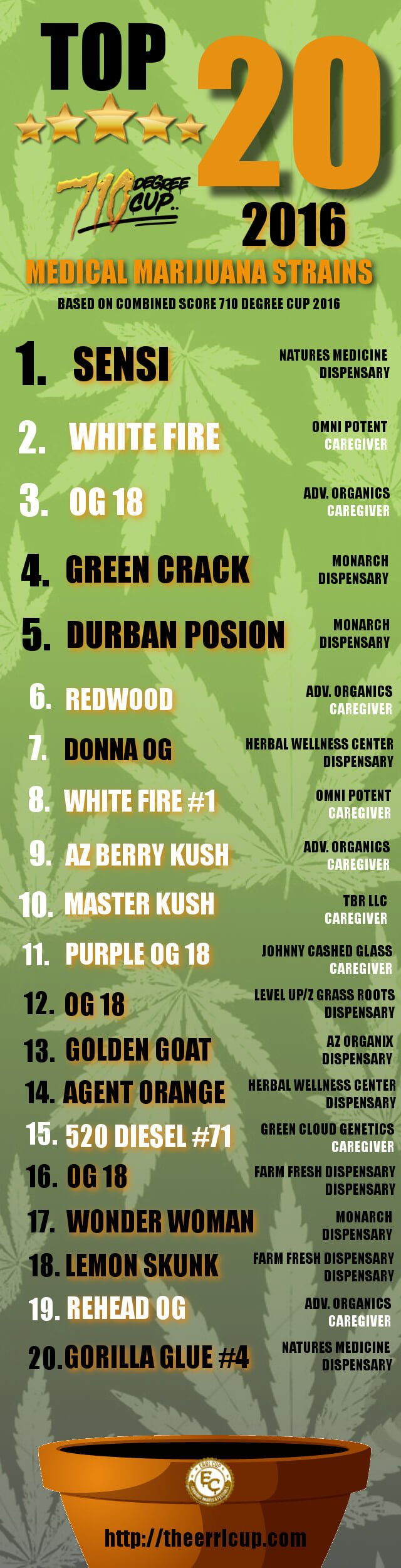 710 degree cup top 20 flower 2016